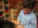 Lucas poñendo a semente